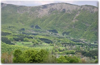 La Valle di Ospitale - sullo sfondo il Monte Lancio m 1549